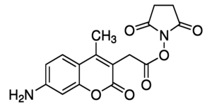 Succinimidyl-7-amino-4-methylcoumarin-3-acetate Chemical Structure