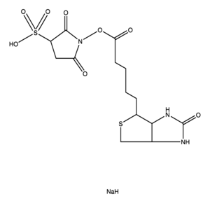 Sulfosuccinimido Biotin Chemical Structure